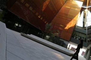 Masdar Free Zone Company Setup